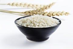 Rice i bunke royaltyfri fotografi