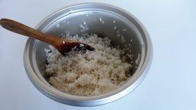 Rice i kopyść Zdjęcie Stock