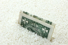 Rice i pieniądze Zdjęcia Royalty Free
