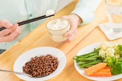 Rice i warzywa Zdjęcie Royalty Free