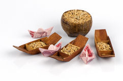 Rice is an important economic product of Thailand. Stock Image