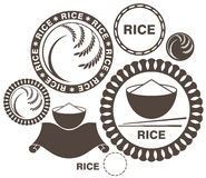 Rice. Isolated objects on white background. Vector illustration (EPS 10 vector illustration