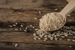 Rice, jasmine rice, mali rice Stock Images