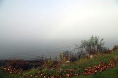 Rice Lake in Ontario. Race Like in Ontario, November 2016 Royalty Free Stock Image