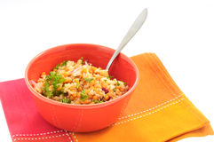 Rice and Lenlils Royalty Free Stock Image