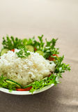 Rice with lettuce Royalty Free Stock Photography