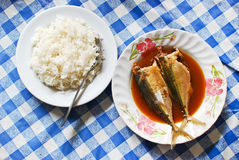 Rice and mackerel soup asian style. Lunch set on blue plaid table royalty free stock photography