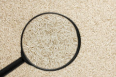 Rice in the magnifying glass Royalty Free Stock Photography