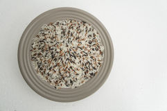 Rice meal food uncooked preparation color seed concept Royalty Free Stock Photos