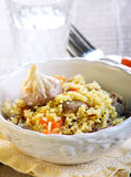 Rice with meat Stock Photo
