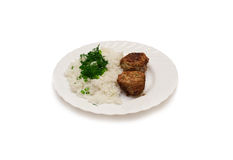 Rice with meat and green onions Stock Images