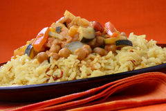 Rice with meat and vegetable sauce Royalty Free Stock Photography