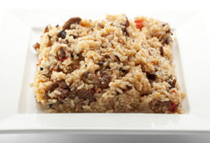Rice with Meat Royalty Free Stock Image