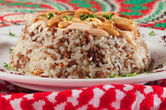 Rice and meats. Royalty Free Stock Photos