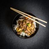 Rice med meat Royaltyfri Fotografi