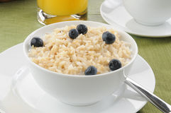 Rice and milk with blueberries Stock Images