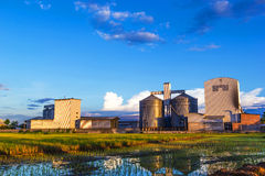 Rice mill. Landscape shot rice mill and rice field Stock Image