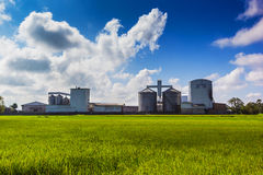 Rice mill. Landscape shot rice mill and green rice field stock photo