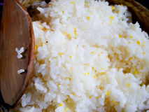 Rice and millet mixed Royalty Free Stock Image