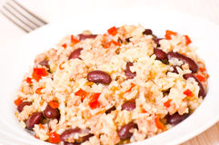 Rice with minced meat and beans Royalty Free Stock Photography