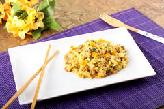 Rice with minced meat and carrots Royalty Free Stock Photo