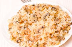 Rice with minced meat and mushrooms Royalty Free Stock Images