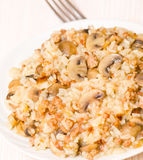 Rice with minced meat and mushrooms Stock Images