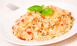 Rice with minced meat stock image