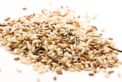 Rice mix Royalty Free Stock Images