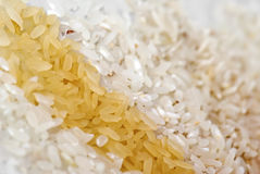 Rice Mix Royalty Free Stock Photography