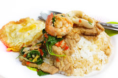 Rice and mixed seafood basil and fried egg. stock image
