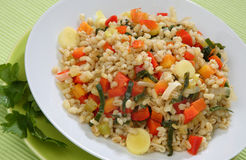 Rice with mixed vegetables Royalty Free Stock Image