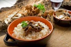 Rice with mushroom Stock Photos