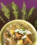Rice mushroom soup with thyme Royalty Free Stock Photo