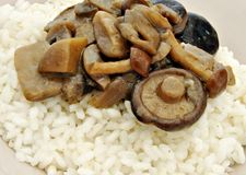 Rice with mushrooms Stock Photos