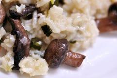 Rice with mushrooms Stock Photos