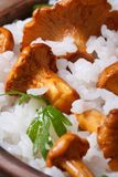 Rice with mushrooms chanterelles and parsley macro Stock Images