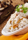Rice with mushrooms, closeup Royalty Free Stock Photos