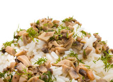 Rice with mushrooms. Isolated on a white background Stock Photo