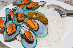 Rice with mussels Stock Image