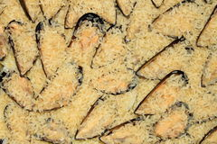Rice and mussels Royalty Free Stock Image