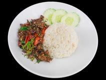 Rice nakrywał z fertanie smażącą gorącą i korzenną wieprzowiną z basilem odizolowywającym na czarnym tle z ścinek ścieżką Obrazy Royalty Free