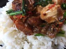 Rice nakrywał z smażącym basilem i wieprzowiną Obraz Stock