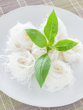 Rice noodle with basil Royalty Free Stock Photo