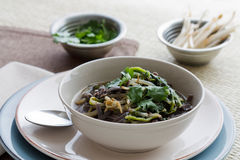 Rice Noodle Soup Royalty Free Stock Photography
