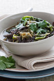 Rice Noodle Soup Stock Images