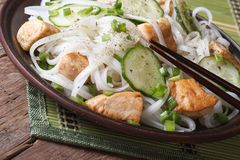 Rice noodles with chicken and vegetables close up Royalty Free Stock Photography