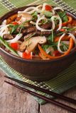 Rice noodles with meat, mushrooms and vegetables vertical Royalty Free Stock Photo