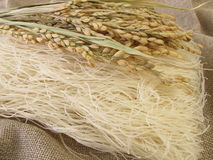 Rice noodles with rice panicles Stock Photo