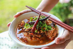 Rice noodles with spicy pork sauce. Thai food Stock Images